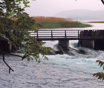 Macedonia (Struga) Drim River flows out of Lake Ohrid - Free image #373097