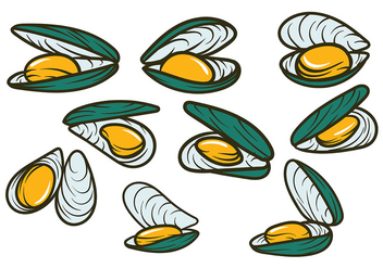Mussel Vector Handdrawn - бесплатный vector #373467