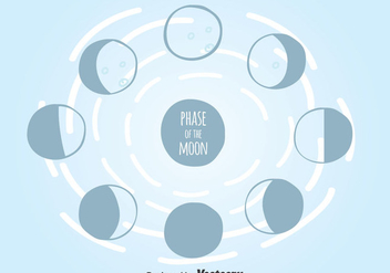Phase Of The Moon Vector - Free vector #373637