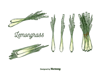 Free Lemongrass Vector - бесплатный vector #375617
