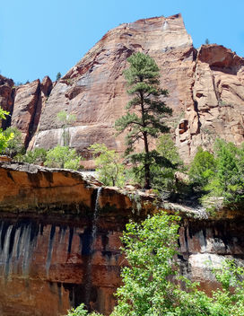 Emerald Pools Trail, Zion NP 5-14 - Kostenloses image #376747