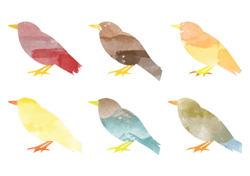 Vector Watercolor Bird Collection - бесплатный vector #378737