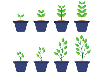 Grow Up Plant Vector - Free vector #380967
