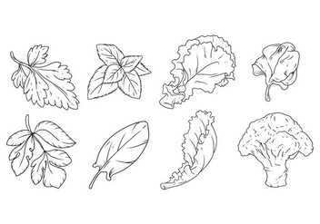 Free Hand Drawing Vegetables Vector - бесплатный vector #381307