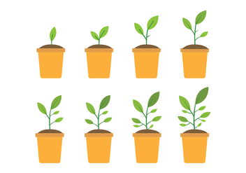 Free Grow Up Plant Icons - Free vector #381687