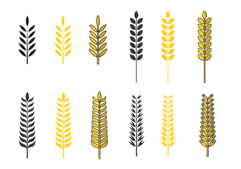 Golden Oat Vector Set - Free vector #384247