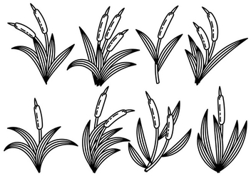Black and White Cattails Icon Vector - бесплатный vector #384327