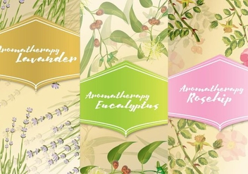 Three Aromatherapy Cards - vector #384477 gratis