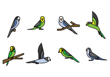 Budgie Vector Icons - бесплатный vector #385817