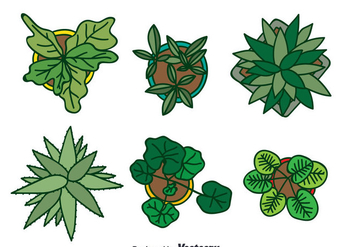 Plant On Pot Top View Collection Vector - vector gratuit #388787