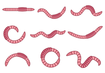 Free Earthworm Animal Vector - vector #390597 gratis