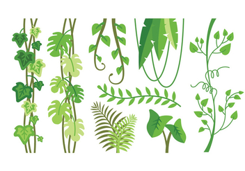 Tropical plants vectors - Free vector #390647