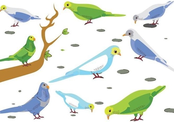Free Budgie Birds Vector - бесплатный vector #390947