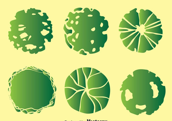 Plant On Pot Top View Collection Vector - vector gratuit #393997