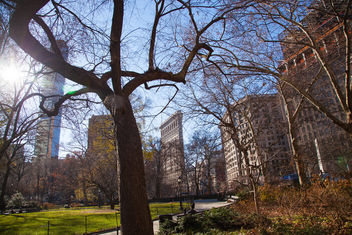 Madison Square Park - image gratuit #394737