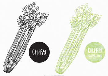 Free Hand Drawn Celery Vector Design - Free vector #395107