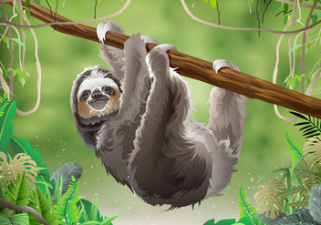Sloth In Jungle Rainforest - бесплатный vector #396187