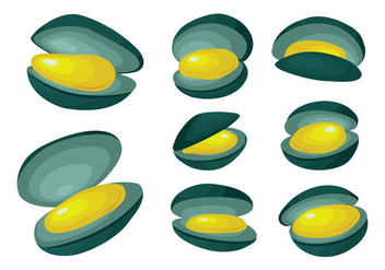 Free Mussel Vector - Free vector #396217