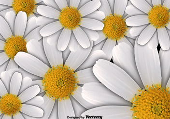 Vector Floral Background - Free vector #396457