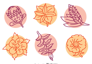 Exotic Flower LIne Vector Set - Free vector #396627