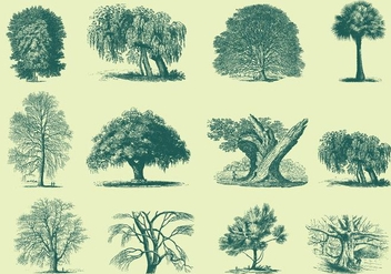 Green Trees Illustrations - бесплатный vector #396807