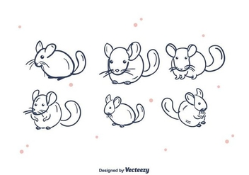 Chinchilla Vector Set - vector gratuit #397387