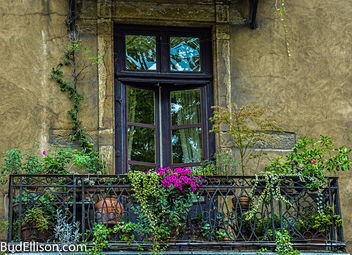 Windows -Lyon, France - Free image #397567