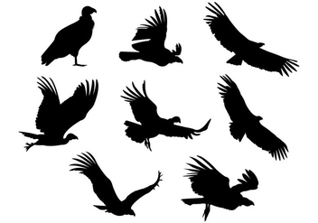 Silhouette Vector Of Condor Bird - vector gratuit #398447