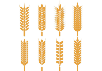 Vector Pack Of Oats - Free vector #398887