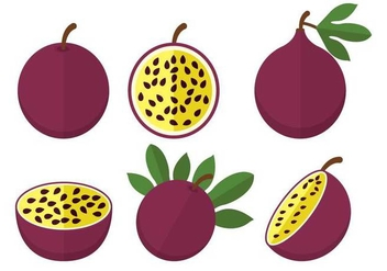 Passion fruit vector - vector #399897 gratis