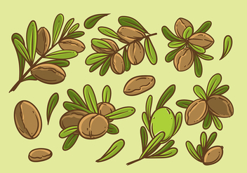 Argan Hand Drawing Vector - vector gratuit #401157