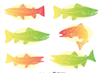 Rainbow Trout Vector Set - Kostenloses vector #401257
