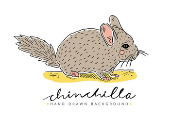 Free Chinchilla Background - Free vector #402537