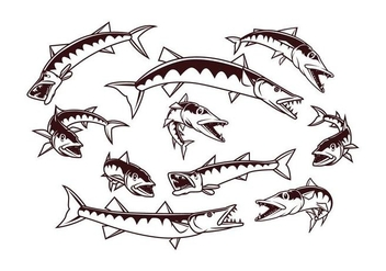 Free Barracuda Vector - Free vector #403087