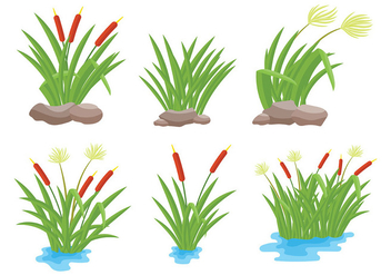 Free Reeds Icons Vector - Free vector #403157