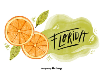 Florida Orange County Watercolor Vector - Free vector #403577