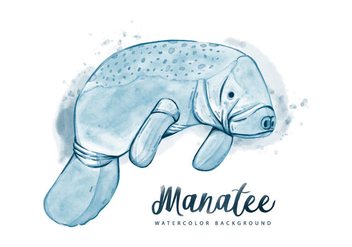 Free Manatee Watercolor Background - Kostenloses vector #403587