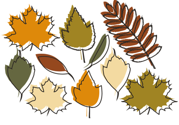 Vector Autumn Leaves - vector #404667 gratis