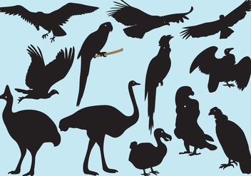 Big Bird Silhouettes - vector gratuit #405007