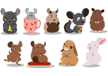 Free Cute Chinchilla Vector - Free vector #405597