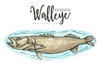 Free Walleye Background - Free vector #405927