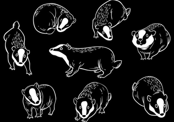 Free Honey Badger Icons Vector - Free vector #405997