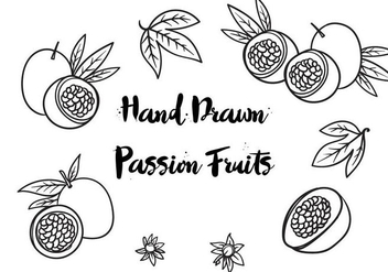 Free Hand Drawn Passion Fruits Vector - Free vector #406727