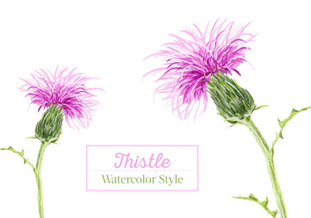 Free Thistle Watercolor Vector - vector gratuit #407337