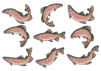 Rainbow Trout Vectors - Free vector #407937