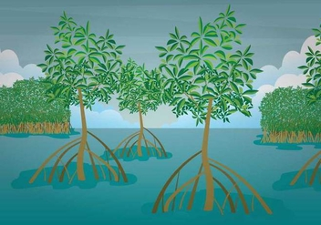Free Mangrove Illustration - vector gratuit #408067