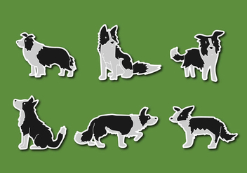 Free Border Collie Vector Illustration - vector #410537 gratis