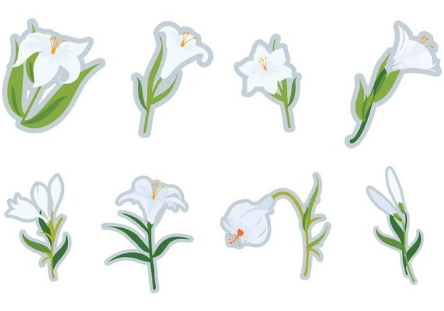 Free White Easter Lilies Vector - Free vector #412247