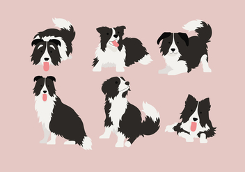 Border Collie 2 Vector - vector gratuit #412857