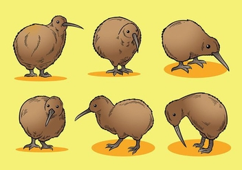 Free Kiwi Bird Icons Vector - бесплатный vector #415777